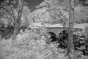 Burnside Bridge 0237 Print by Guy Whiteley