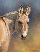 Burro Print by Paul Krapf