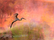 Egret Digital Art Posters - Burst Of Color Egret Poster by J Larry Walker