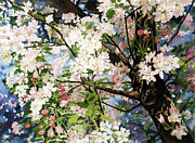 Burst Painting Posters - Burst Of Spring Poster by Barbara Jewell