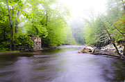 Poconos Art - Bushkill Creek by Bill Cannon