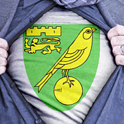 Footie Prints - Businessman Norwich City Fan Print by Antony McAulay