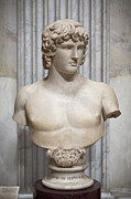 Bust Of Antinous Print by Stefano Baldini