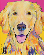 Yellow Dogs Framed Prints - Buster Framed Print by Pat Saunders-White