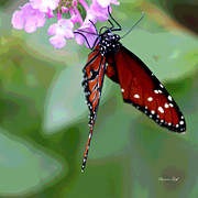 Butterfly Digital Art Posters - Busy Busy II Poster by Suzanne Gaff