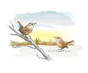 Wrens Digital Art - Busy Wrens by Pat Thompson
