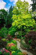 Manicured Prints - Butchart Gardens Pathway Print by Inge Johnsson
