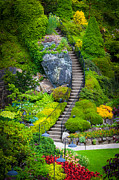 Manicured Prints - Butchart Gardens Stairs Print by Inge Johnsson