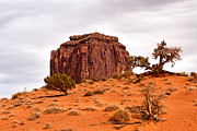 Monument Valley Prints - Butte - Monument Valley Print by Peter Tellone