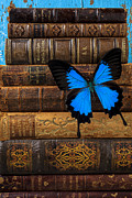 Leather Books Posters - Butterfly and old books Poster by Garry Gay