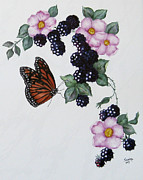 Black Berries Painting Framed Prints - Butterfly and Roses and Blackberriesr Framed Print by Sandra Maddox