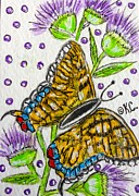 Kathy Marrs Chandler - Butterfly and Thistles