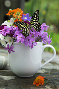 Coffee Mug Prints - Butterfly and wildflowers Print by Edward Fielding
