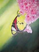 Tammy McClung - Butterfly blessings