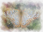 Unconsciousness Prints - Butterfly Dreams Print by Rhonda Martin