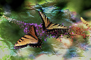 Tiger Swallowtail Digital Art Framed Prints - Butterfly Friends Framed Print by EricaMaxine  Price