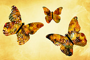 Trio Digital Art Posters - Butterfly Kisses Poster by Christina Rollo