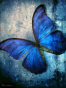 Spa Wall Decor Prints - Butterfly Print by Mark Ashkenazi