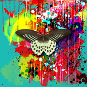 Butterfly Montage Print by Gary Grayson