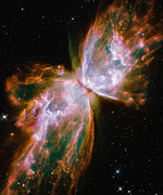 Galactic Digital Art - Butterfly Nebula by Nicholas Burningham