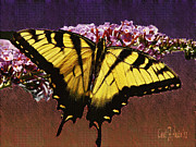 Tiger Swallowtail Digital Art Prints - Butterfly on Warm Textures Print by Carol F Austin