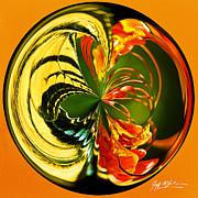 Jeff McJunkin - Butterfly Orb II