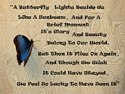 Sympathy Metal Prints - Butterfly Poem Metal Print by Aimee L Maher