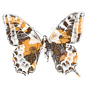 Fashion Posters - Butterfly Poster by Ramneek Narang