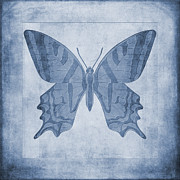 John Edwards - Butterfly Textures...