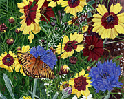 Butterfly Wildflowers Garden Oil Painting Floral Green Blue Orange-2 Print by Walt Curlee