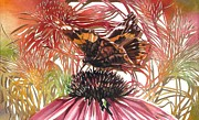 Alfred Ng - butterfly with coneflower