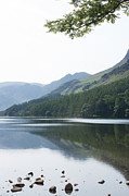 Julie McCabe - Buttermere Shoreline