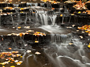 Buttermilk Falls Art - Buttermilk Falls by Shannon Workman