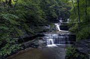 Buttermilk Falls State Park Prints - Buttermilk Waterfalls Print by David Simons