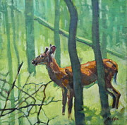 North American Wildlife Painting Posters - Button Buck Poster by Patricia A Griffin