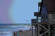 Birds Prints - Buxton Beach and People Print by Cathy Lindsey