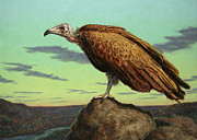 Birds Painting Posters - Buzzard Rock Poster by James W Johnson