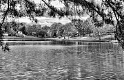 Bw Lake Views  Print by Chuck Kuhn