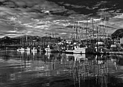 Boats In Harbor Posters - BW Thomas Basin 5 Poster by Timothy Latta