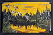 Crossbill Paintings - Bwca  by Rudolph Bajak