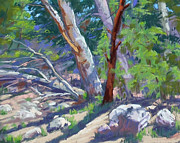 Side Pastels Prints - By the Creek Print by Patricia Rose Ford