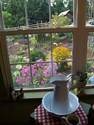 Teacup Photos - By the Garden Window in North Carolina by Anna Lisa Yoder