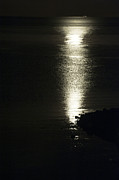 Sea Moon Full Moon Photo Posters - By the Light of the Silvery Moon Poster by Anne Gilbert