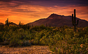 Southwest Landscape Metal Prints - By the Light of the Sunset Metal Print by Saija  Lehtonen