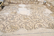 Byzantine Mosaic Depicting Animals And Hunting Scenes. Print by Shay Levy