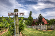 Grapevine Photos - Cabernet by Debra and Dave Vanderlaan