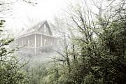 Debra and Dave Vanderlaan - Cabin in the Fog