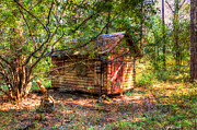 Shack Photos - Cabin In The Woods by Heidi Smith