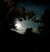 Moonlit Night Photos - Cabin Moon by Jacqueline Athmann