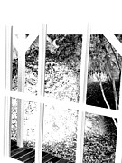 Cabin Window Digital Art Framed Prints - Cabin view 2 Framed Print by John  Duplantis
